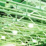 LED lights for businesses