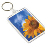 Keyring corportate gifts