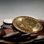 crypto investors insider